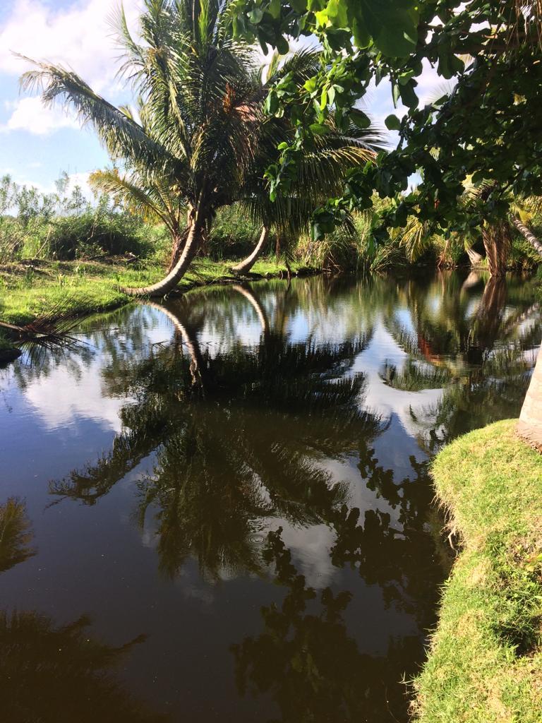 Lagoon Cabarete