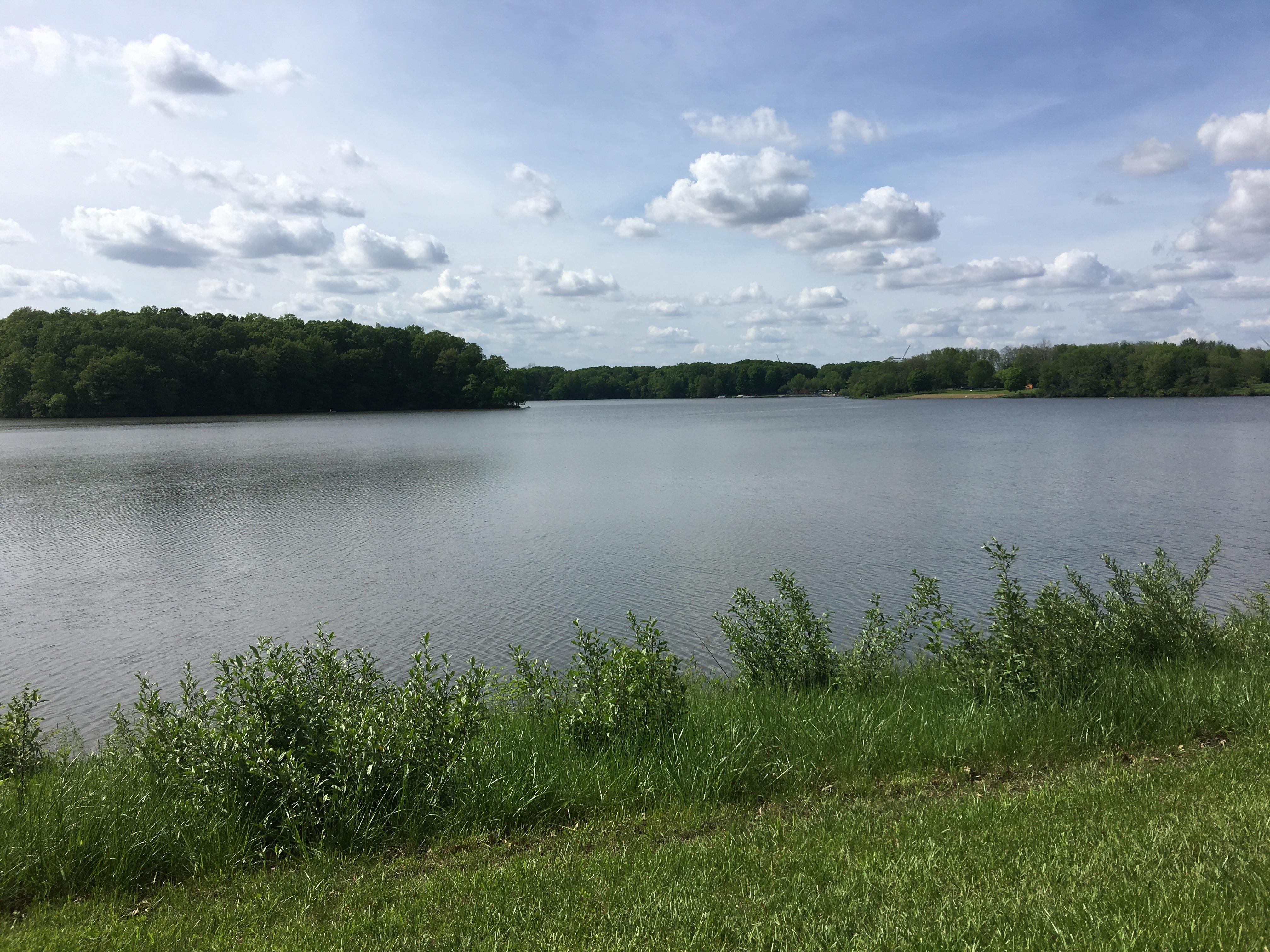 Lake Bloomington